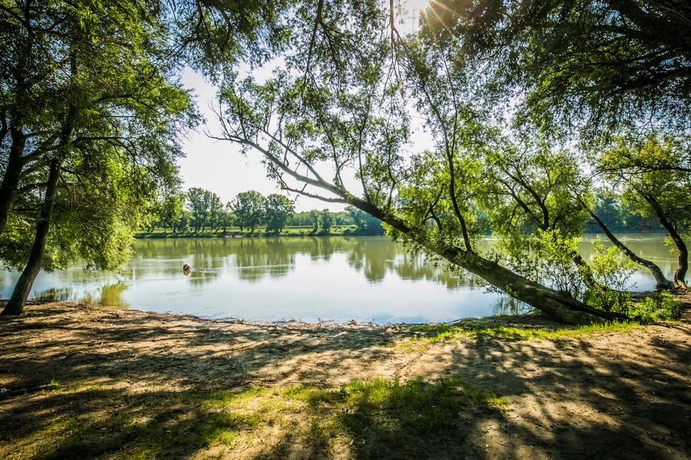 """Szentendre """"Postás"""" szabadstrandját az I love Duna kampány hatására tette fürdőzésre alkalmassá ezen a nyáron a város önkormányzata."""
