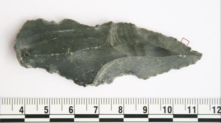 primitive-tool