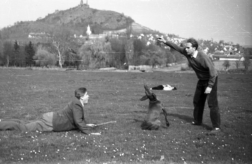 Böhönye fekszik, kutya ül, Görgey idomít – életkép a szigligeti rétről. Böhönye, akit talán Csurka István néven többen ismernek, ekkor sikeres harmincas novella- és drámaíró. Ki lesz a bálanya? c. drámájából később film is készült. Szigligeten szenvedélyei közül csak a lóversenyt kellett nélkülöznie, a kártya és az alkohol társa maradt. Utóbbi adott okot állítólag Aczél Györgynek a következő jó tanácsra: idefigyeljen, Csurka, maga mindig jobbra rúg be, rúgjon egyszer már be balra is! (Népszava, 2004. április 30.) Görgey Gábor a Füst és fény és a Délkör c. verseskötetek, illetve a Komámasszony, hol a stukker? C. dráma írójaként játszik a képen. A két ifjúkori barát később a parlamenti folyosón is találkozott, vajon emlékeztek-e még a szigligeti időkre?
