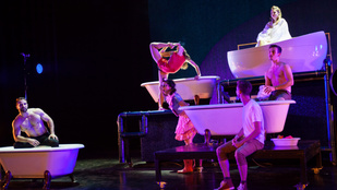 Fotogén fürdőszobát csináltak a cirkuszból a Szigeten