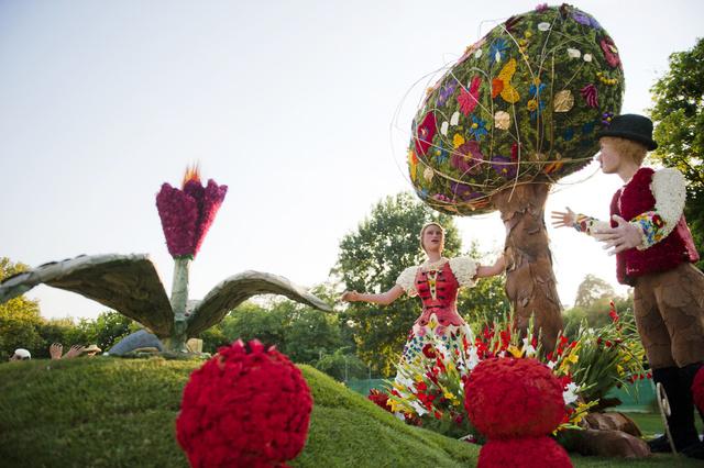 Debrecen, virágok mindehol