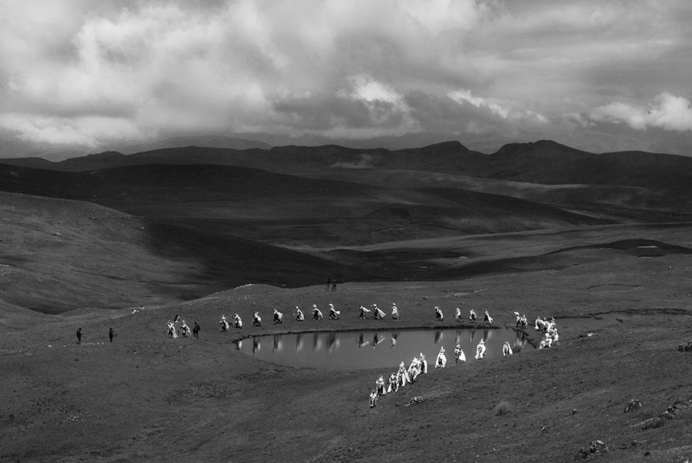 A Tinkuy Chiuchillani az Andok hagyományos tánca. A férfiak ilyenkor hullatának, egy helyi libafajnak öltöznek, hol körbefutják, hol körbesétálják a tavakat és a lakóhelyük, a földjük vagy a legelőik környékét. Majd bemennek a faluba, hogy megüljék a Bábák ünnepét. A szokások része az is, hogy a férfiak az egyedülálló nőknek hódolnak.