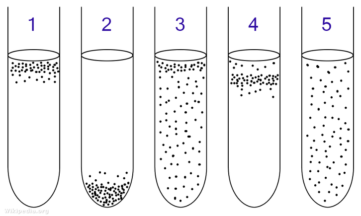 Folyékony táptalajon tenyésztett baktériumok oxigénhez való viszonyuk szerint helyezkednek el: 1: Obligát aerob 2: Obligát anaerob 3: Fakultatív anaerob 4: Mikroaerofil 5: Aerotoleráns