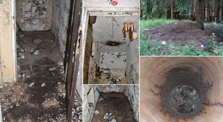 Balra és középen a képeken a kolónia termét lehet látni a bunkerben, a földön az élő hangyákkal és a padlót borító tetemekkel; jobbra pedig a szellőző, ami köré a hangyaboly épült a felszínen.