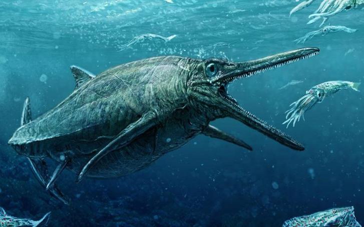 107585604  University of Edinburgh-dinosaur-NEWS-xlarge trans++A
