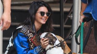 Kendall Jennernek jobban áll a kutya, mint a nemkutya