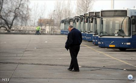 Egy buszvezető sétál a parkoló buszok előtt BKV cinkotai buszgarázsában a főváros XVI. kerületében.