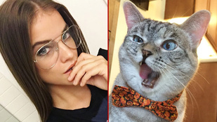 A macskákat vagy a magyar celebnőket követik többen?