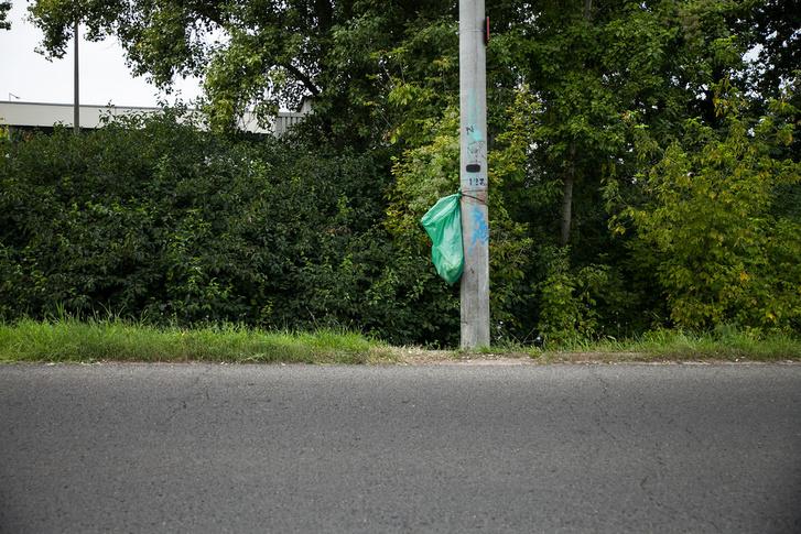 A lányok által kirakott szemetes a Dunakeszi úton