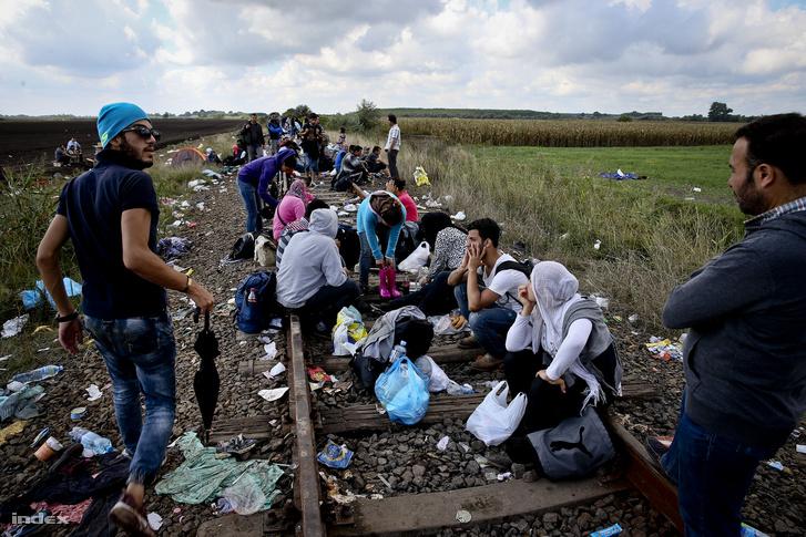 Menekültek a Szeged-Szabadka vasútvonalon Röszke és Horgos között 2015. szeptember 12-én.