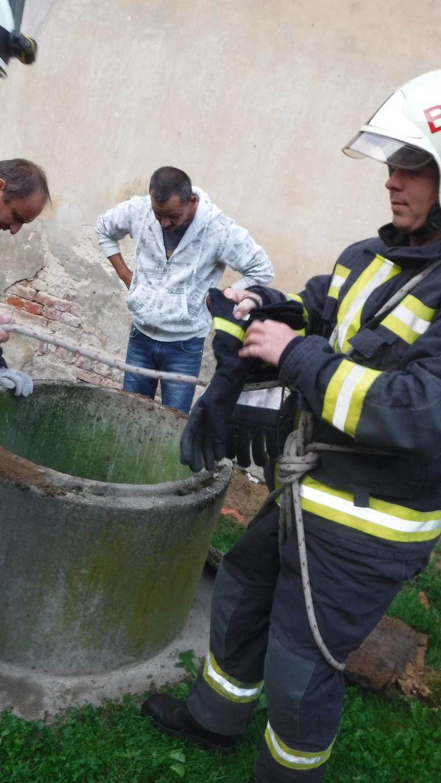 A tűzoltó egy kötélen ereszkedett le a hét méter mély kútba, hogy kimentse az állatot.