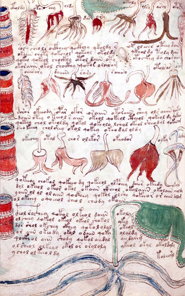 A Voynich-kézirat valamikor a 15