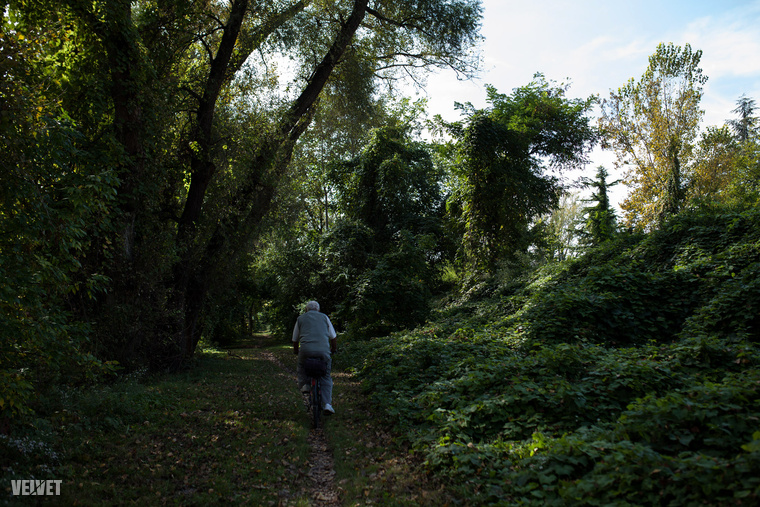 A párhuzamos úton, közelebb a vízhez, a fák között a horgászokkeresikaz ideális helyszínt a letelepedéshez.