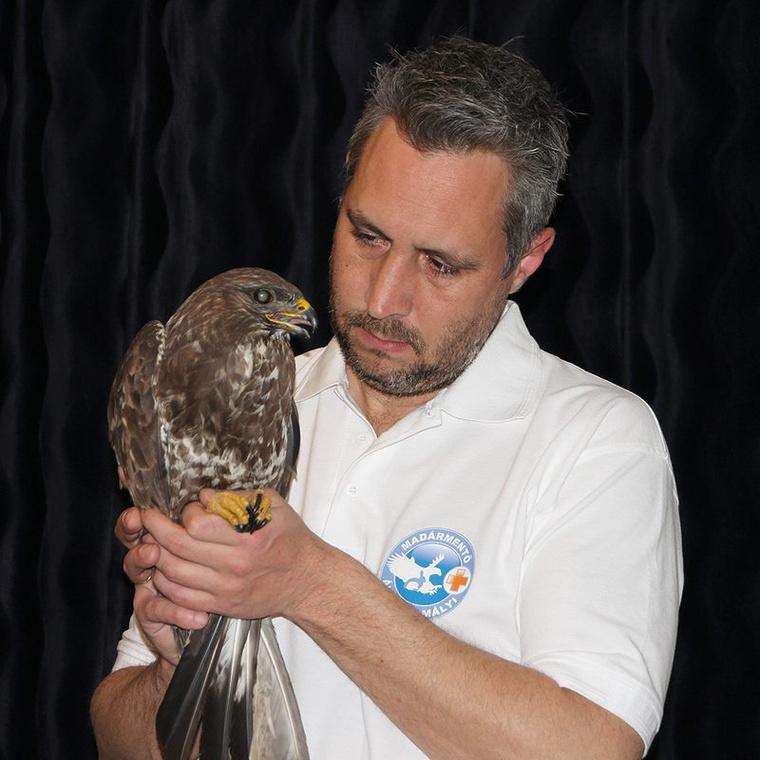 Lehoczky Krisztián munka után még 10 órát tölt a sérült madarak gondozásával és gyógyításával.