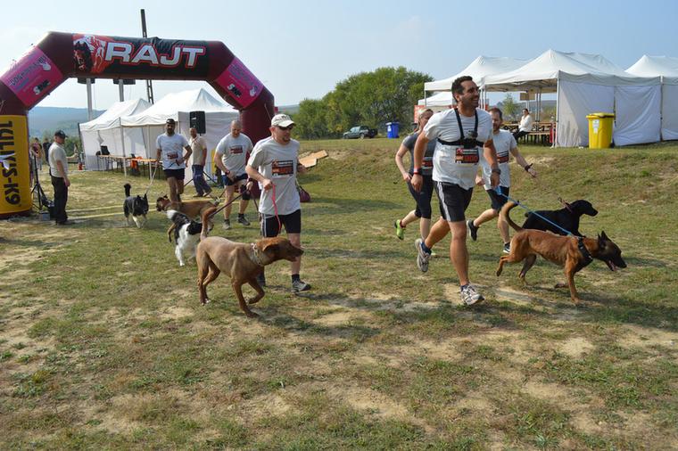 hanem egy kőkemény akadálypályás futóversenyről, a                         HARD DOG RACE-ről.
