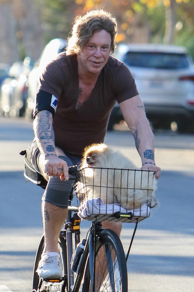 Mickey Rourke Golden Globe-díjas színész, egykori boxoló újra formában van - úgy tűnik felhagyott a sokéves botox kúrával, és inkább a sportban vezeti le felesleges energiáit