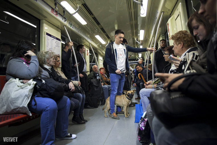 Dolly nem piszkított be a metrókocsiba, hiszen egy HÖLGY