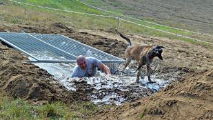 A Hard Dog Race jobb, mint egy kőkemény iszapbirkózás