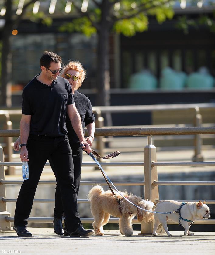 A 47 éves színészről és feleségéről, Deborra-Lee Furness-ről készült néhány remek fotó kutyasétáltatás közben.