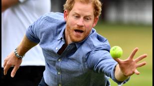 Harry herceg labdaérzéke nulla