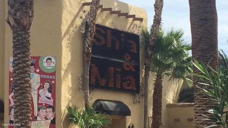 Shia LaBeouf négy éve jár Mia Goth-tal