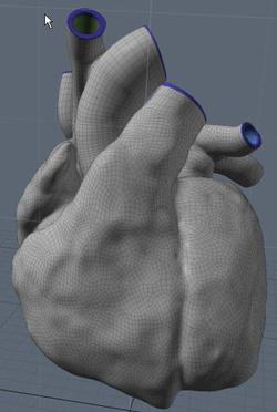 Szív 3D-ben