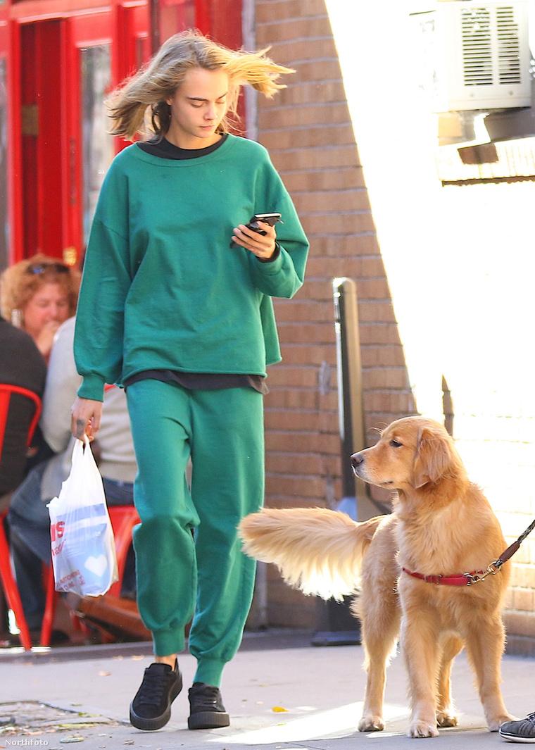 Kutyák és emberek.