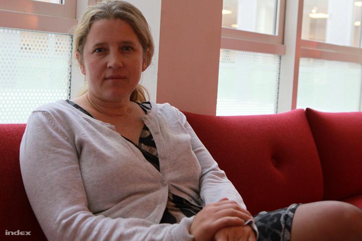Karin Eriksson újságíró szerint nem várható lazítás a törvénykezésben
