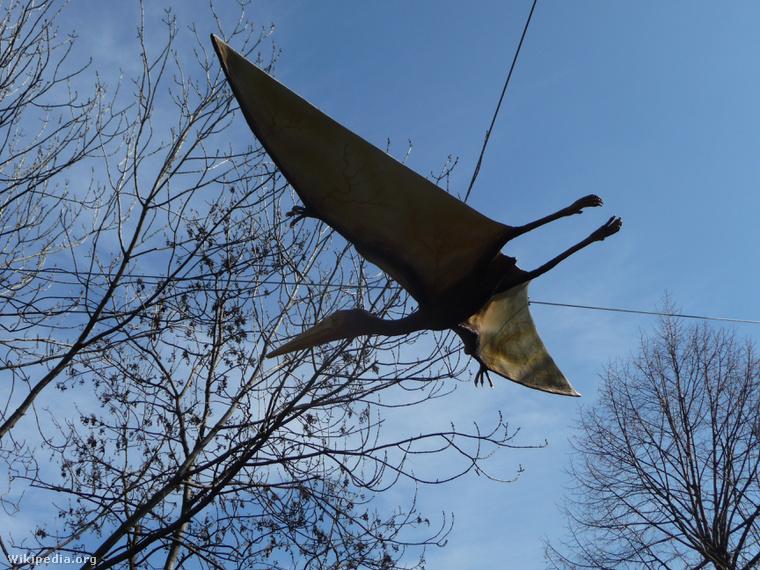 Egy Pterodactylus szobra a Fővárosi Állat- és Növénykertben