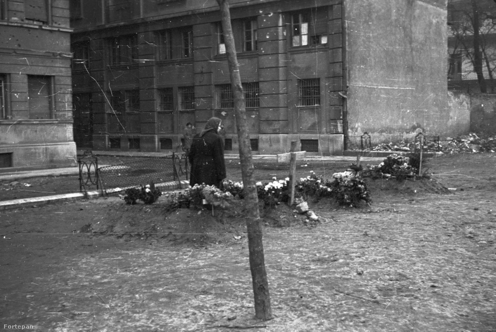 Ideiglenes sírok a Markusovszky téren. Nem túl messze innen kapott halálos lövést nagyanyám testvére, Józsi. Ő is kenyérért vagy tejért indult, október 25-én a sorban állt, amikor egy teherautóról válogatás nélkül lőni kezdtek. Úgy tudni, előreengedett egy várandós nőt a sorban, így rekedt ő az utcán. Még tíz napig élt, a szovjet bevonulás reggelén halt meg a kórházban.