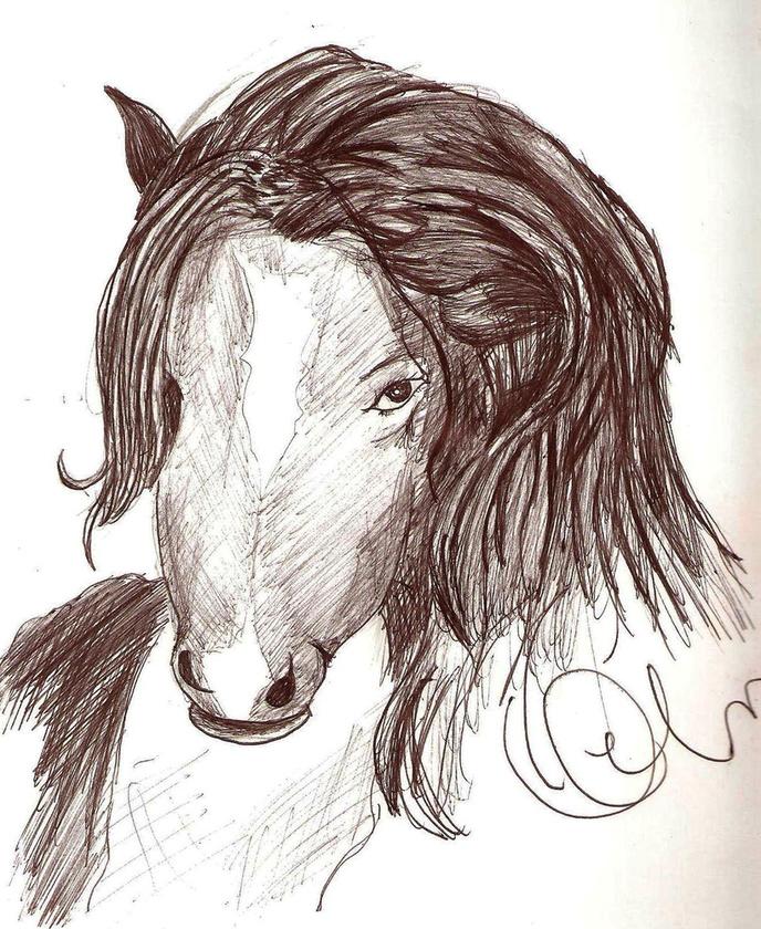 A közép-amerikai La Siguanaba egy ló- vagy koponyafejű hosszú hajú nő