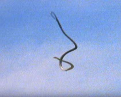 A szintén chilei lakosnak számító El Peuchen egy nagy kígyó, ami repülni is tud és közben sípoló hangot bocsát ki