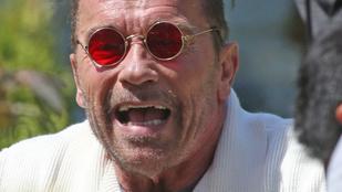 Ha egyetlen törvényt módosítanának, Schwarzenegger indulhatna az elnökválasztáson