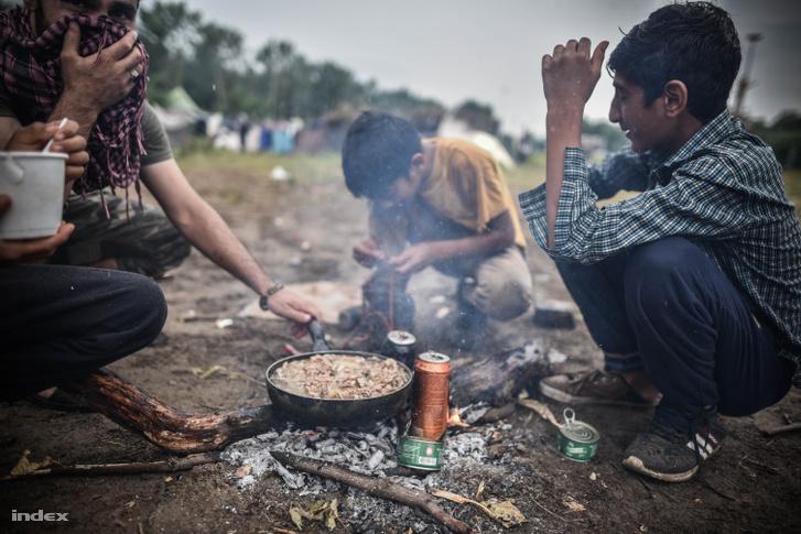 Menekültek Röszkénél 2016 júliusában