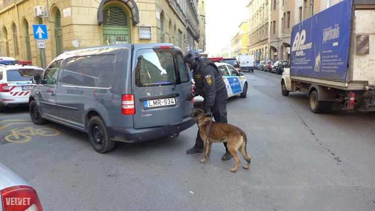 Kutyás rendőrök is érkeztek a Szövetség utca 26-os számhoz.