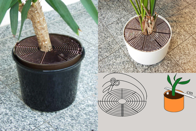 en-reer-plant-pot-guard-2016 (1)