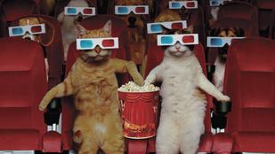 Ideje megértenünk, miért rajongunk annyira a popcornért!