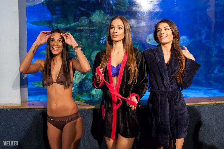 Az előválogatón dőlt el, hogy ki az a négy szerencsés, akik cápák között úszhatnak, és kis golyókat hozhatnak fel a felszínre