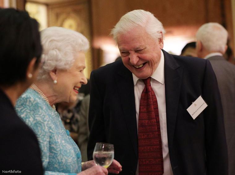 A brit királynő és Sir David Attenborough a Buckingham-palotában.