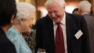 A nap képe - II. Erzsébet és Sir David Attenborough felhőtlen boldogsága