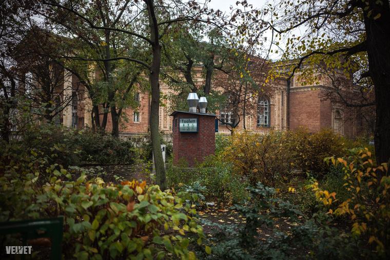Egy újabb nyilvános vécé a Városligetben, az Olof Palme ház mellett.