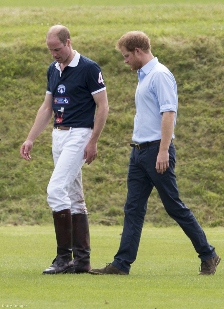Vilmos herceg és Harry herceg