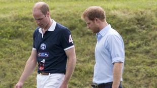 Megvolt a nagy találkozás: Harry herceg Vilmosnak is bemutatta a barátnőjét