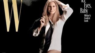 Barbra Streisand harisnyás combja nem csak önt éri váratlanul