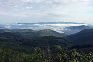 Egy ködös reggel és egy új nap kezdete a Pilisben.