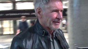 Harrison Ford plüssmackót küldött a budapesti kávézónak