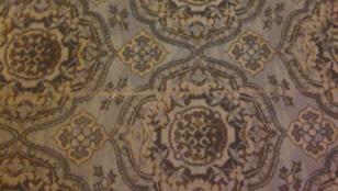 Ha megtalálja a teknőst a szőnyegen, ígérjük, hogy megtapsoljuk