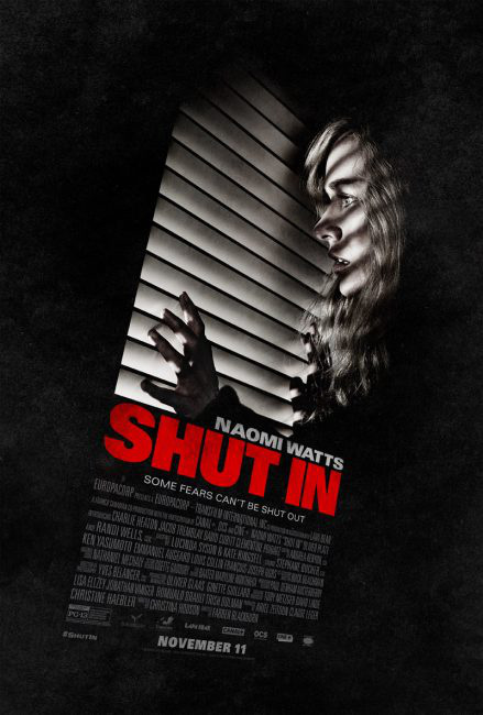 shutinposter-439x650