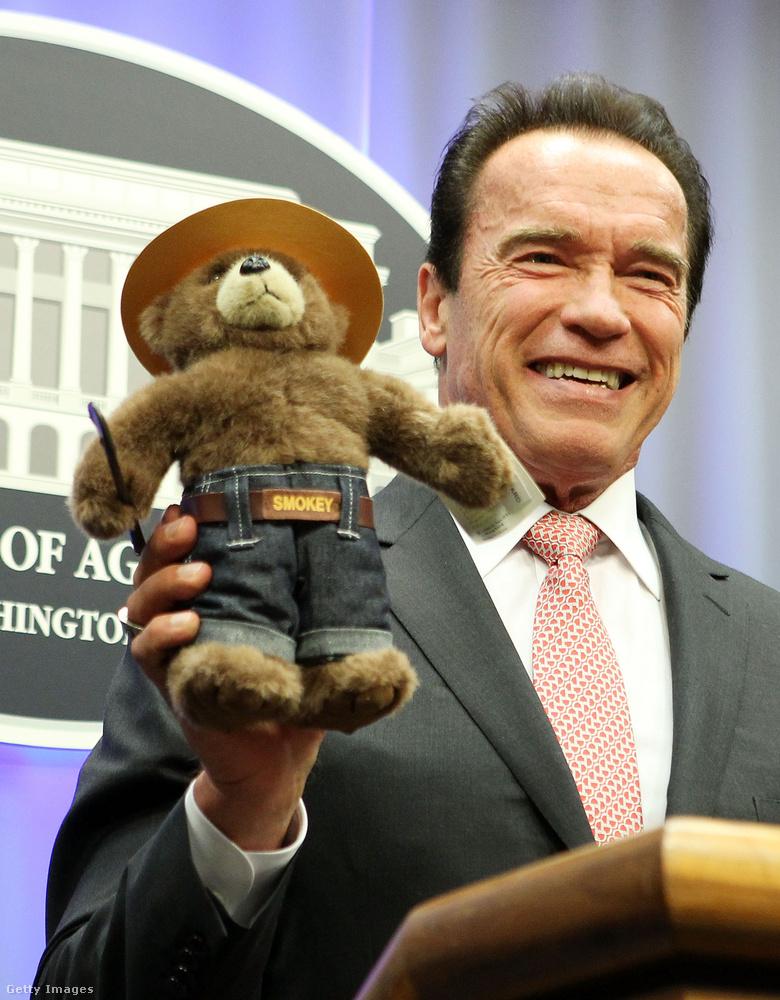 A Terminátor-filmek sztárja, Arnold Schwarzenegger 2003-ban lett Kalifornia kormányzója, ám politikai karrierje sem gátolta meg abban, hogy megmaradjon ugyanannak a közvetlen, humoros embernek
