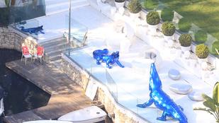 Justin Bieber kék krokodilokkal osztozik szerénynek nem nevezhető hajlékán